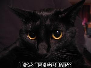 grumpy-lolcat1