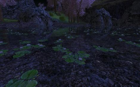 pond-at-night-ered-luin