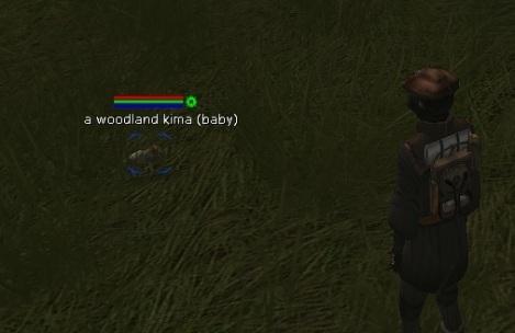 Kima baby